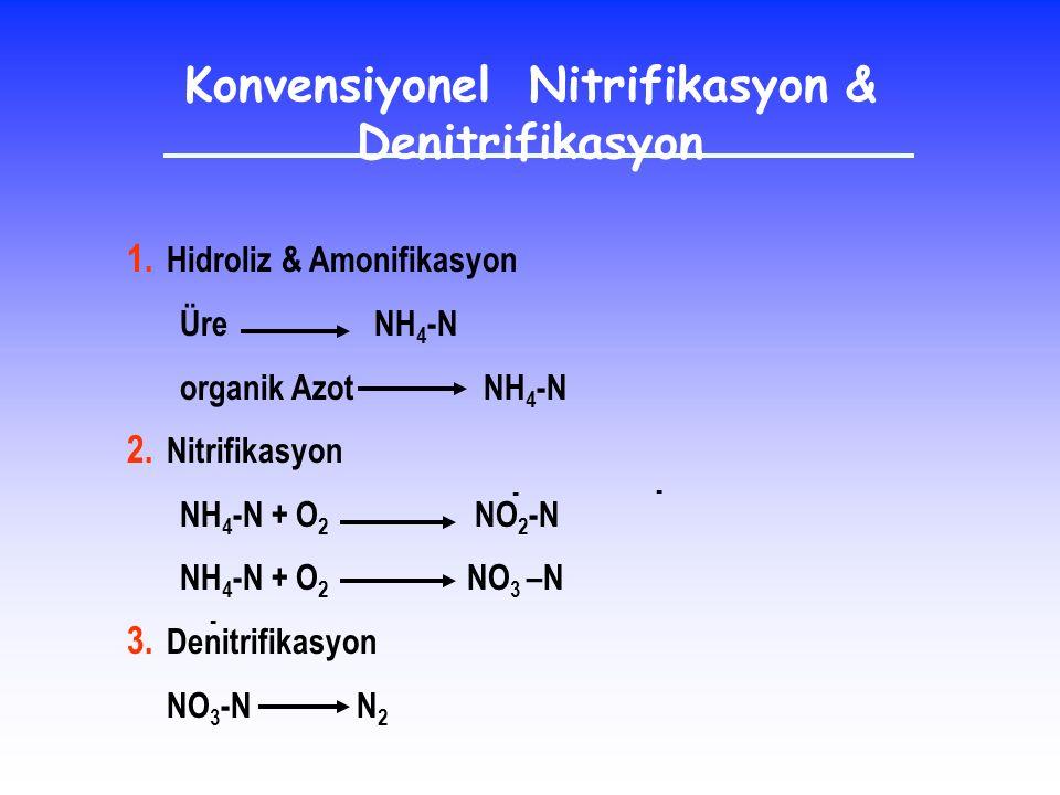 Konvensiyonel Nitrifikasyon & Denitrifikasyon