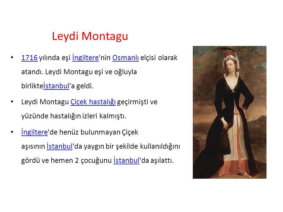 Leydi Montagu 1716 yılında eşi İngiltere nin Osmanlı elçisi olarak atandı. Leydi Montagu eşi ve oğluyla birlikteİstanbul a geldi.