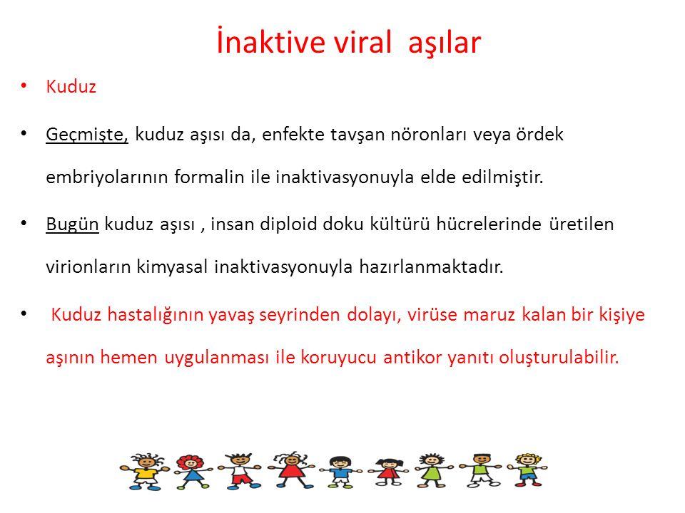 İnaktive viral aşılar Kuduz