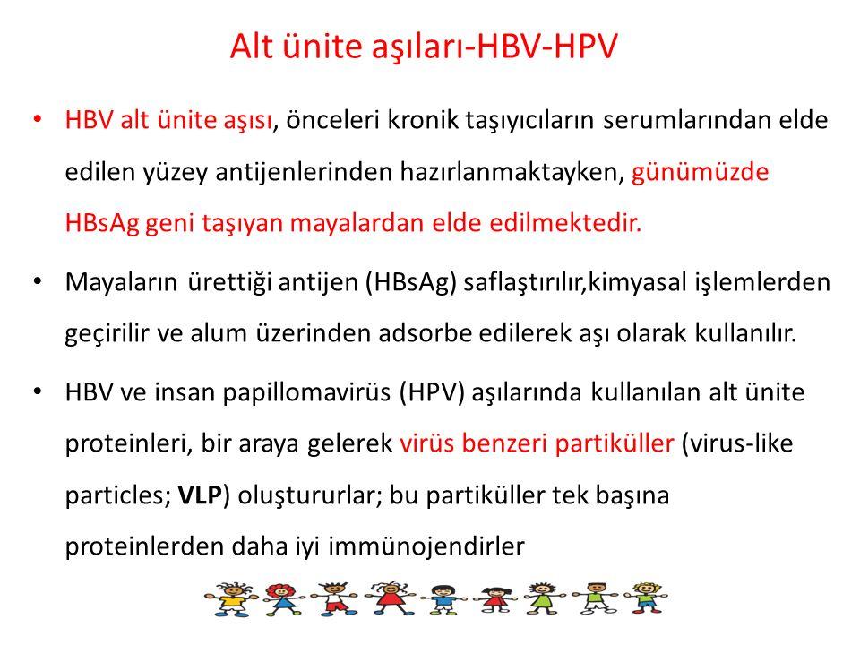 Alt ünite aşıları-HBV-HPV