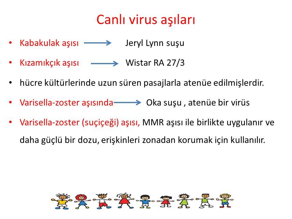 Canlı virus aşıları Kabakulak aşısı Jeryl Lynn suşu