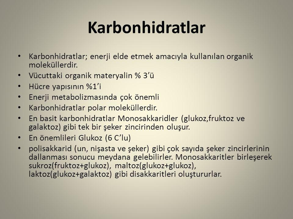 Karbonhidratlar Karbonhidratlar; enerji elde etmek amacıyla kullanılan organik moleküllerdir. Vücuttaki organik materyalin % 3'ü.