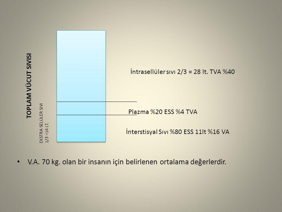 V.A. 70 kg. olan bir insanın için belirlenen ortalama değerlerdir.