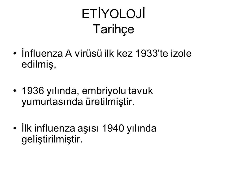 ETİYOLOJİ Tarihçe İnfluenza A virüsü ilk kez 1933 te izole edilmiş,