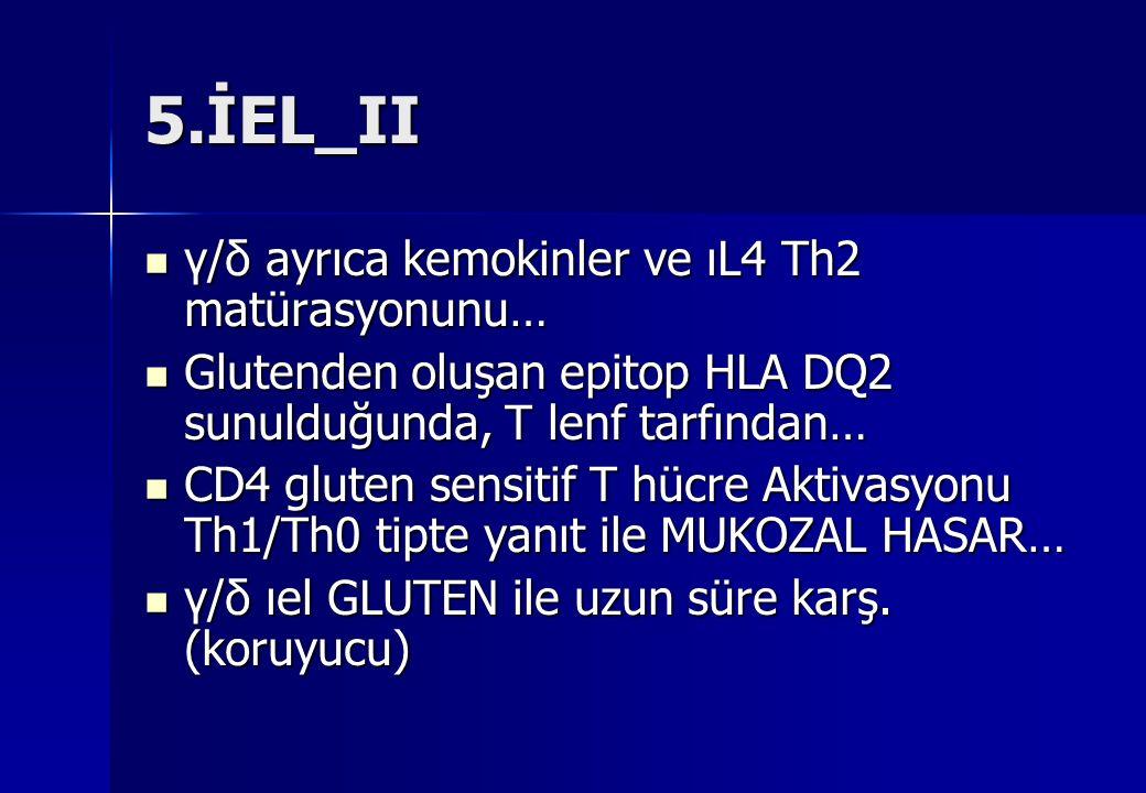 5.İEL_II γ/δ ayrıca kemokinler ve ıL4 Th2 matürasyonunu…