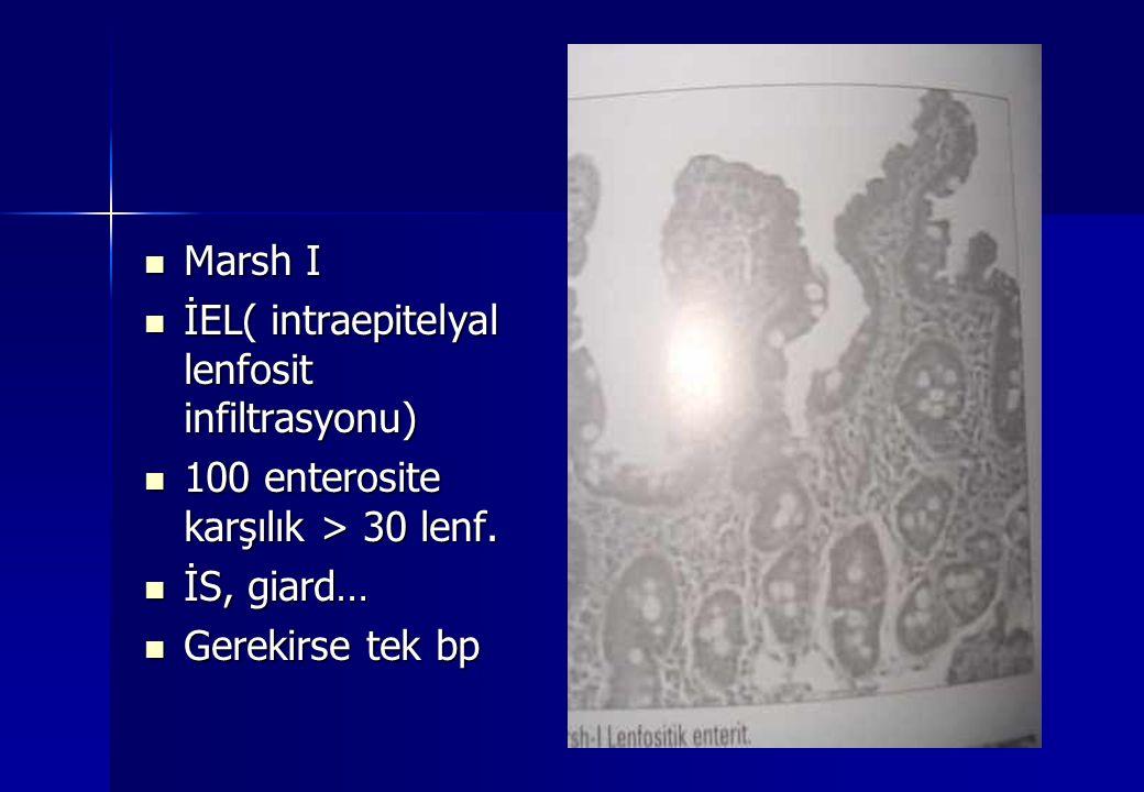 Marsh I İEL( intraepitelyal lenfosit infiltrasyonu) 100 enterosite karşılık > 30 lenf. İS, giard…