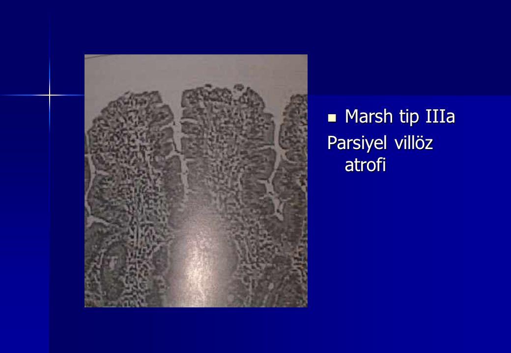 Marsh tip IIIa Parsiyel villöz atrofi