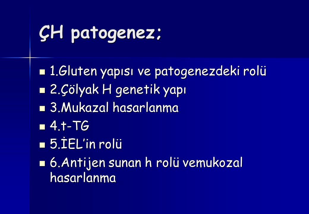 ÇH patogenez; 1.Gluten yapısı ve patogenezdeki rolü