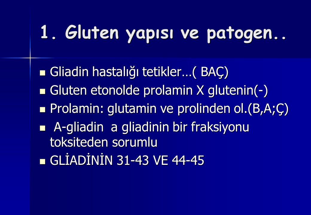 1. Gluten yapısı ve patogen..