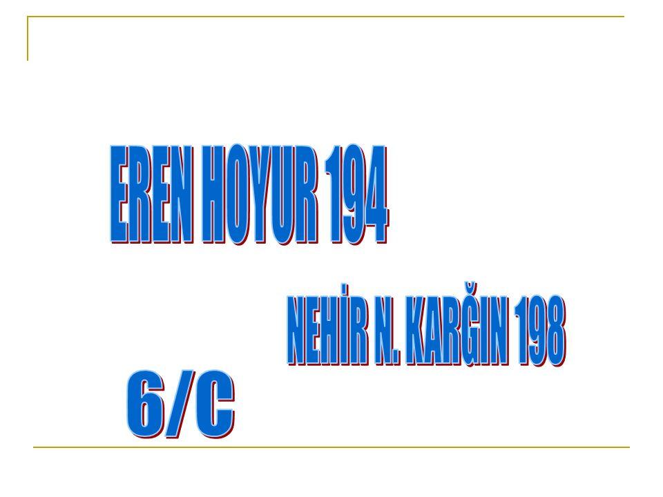 EREN HOYUR 194 NEHİR N. KARĞIN 198 6/C