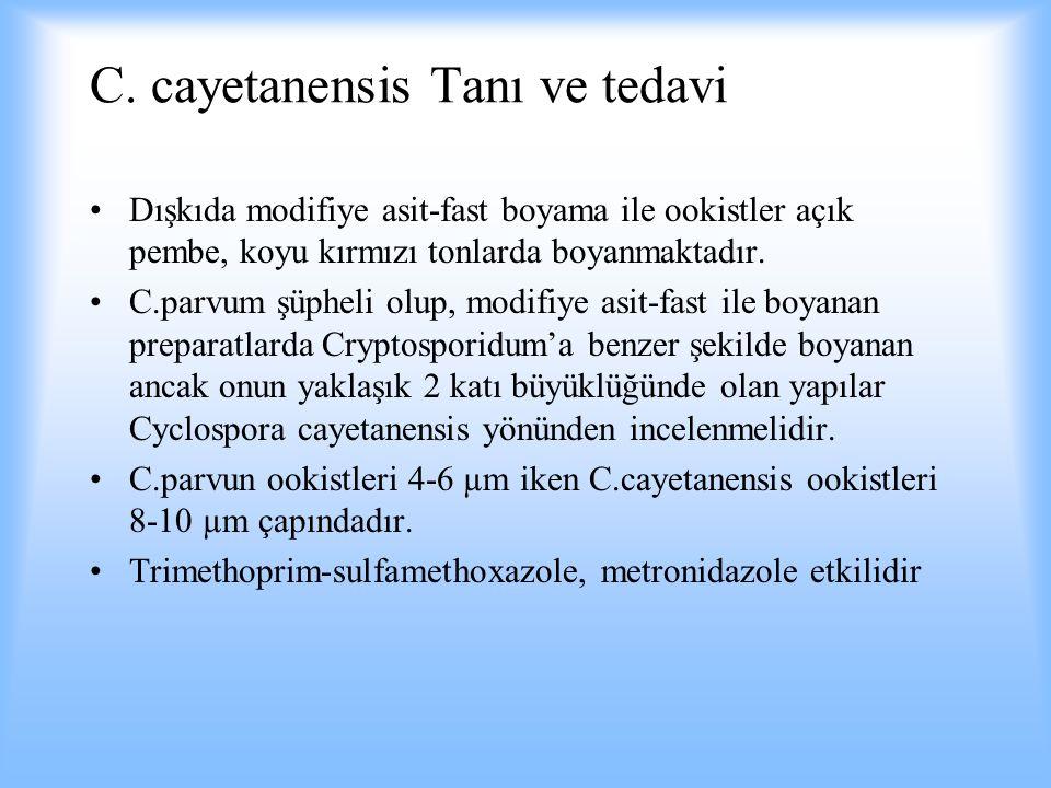 C. cayetanensis Tanı ve tedavi