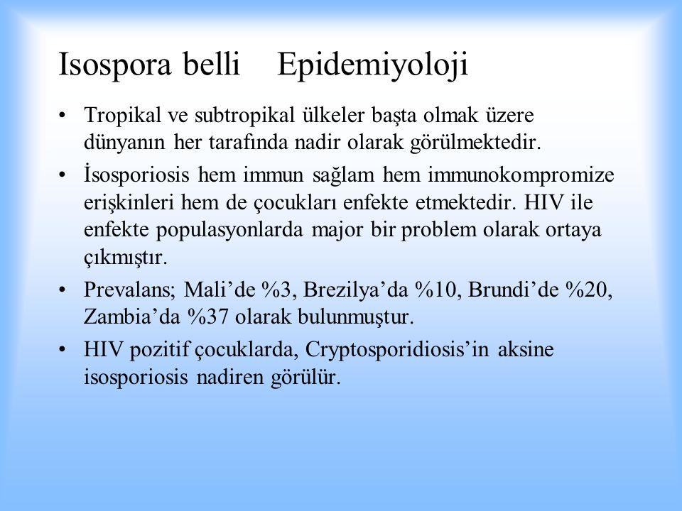 Isospora belli Epidemiyoloji