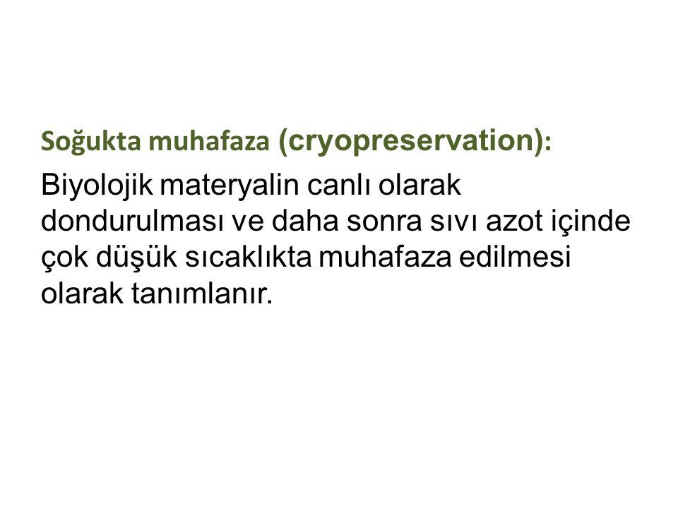 Soğukta muhafaza (cryopreservation):
