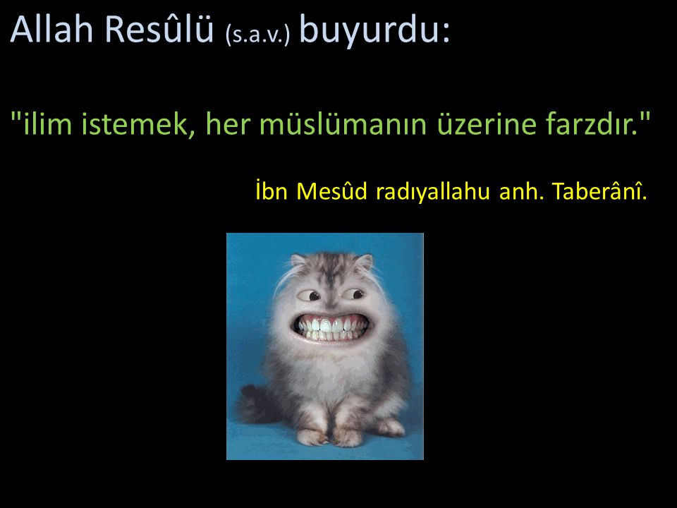 Allah Resûlü (s.a.v.) buyurdu: ilim istemek, her müslümanın üzerine farzdır. İbn Mesûd radıyallahu anh.