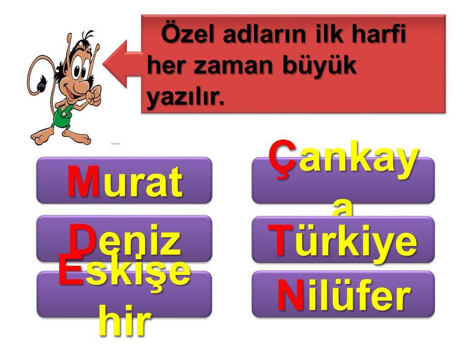 Murat Çankaya Deniz Türkiye Eskişehir Nilüfer