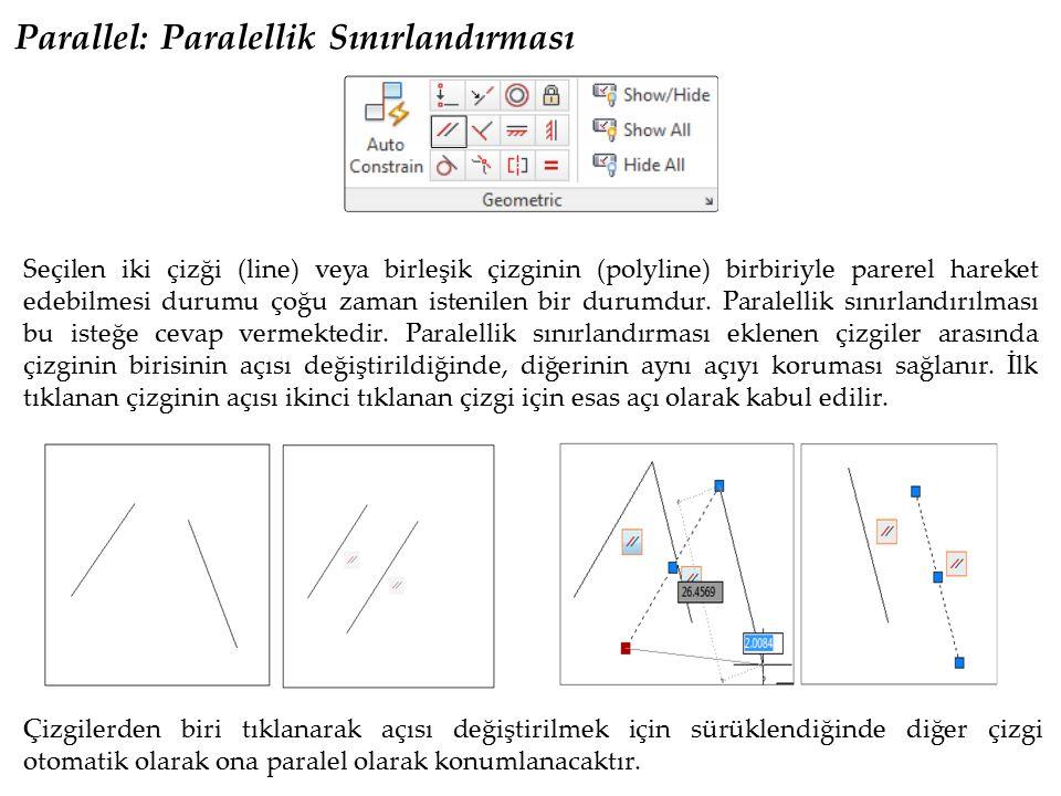 Parallel: Paralellik Sınırlandırması
