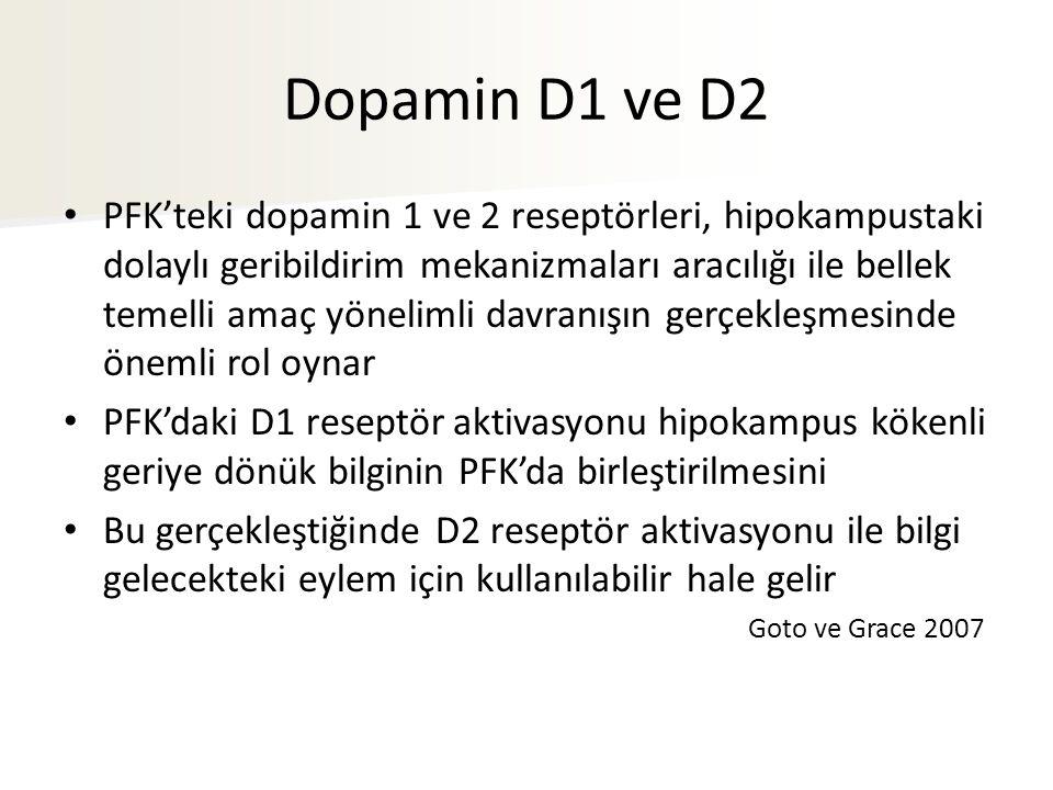 Dopamin D1 ve D2