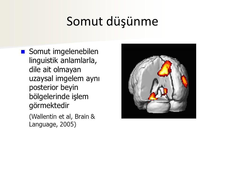 Somut düşünme Somut imgelenebilen linguistik anlamlarla, dile ait olmayan uzaysal imgelem aynı posterior beyin bölgelerinde işlem görmektedir.