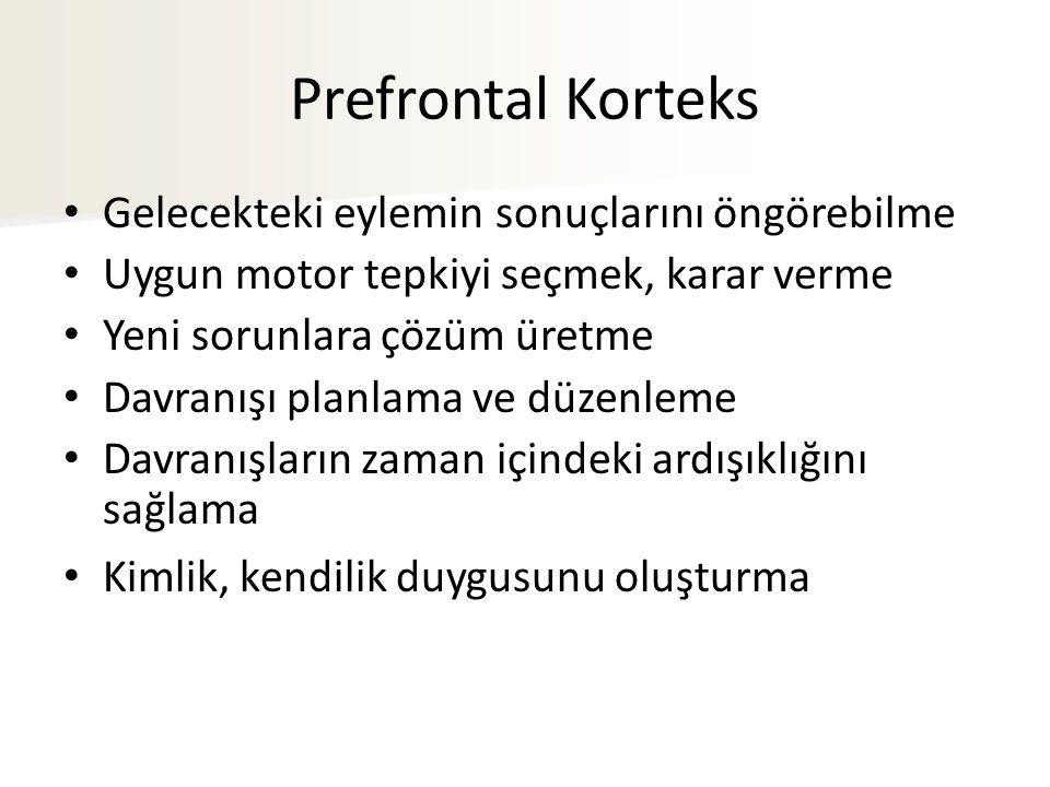 Prefrontal Korteks Gelecekteki eylemin sonuçlarını öngörebilme