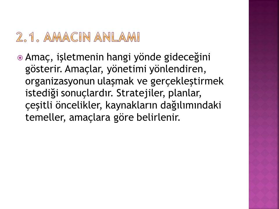 2.1. AMACIN ANLAMI