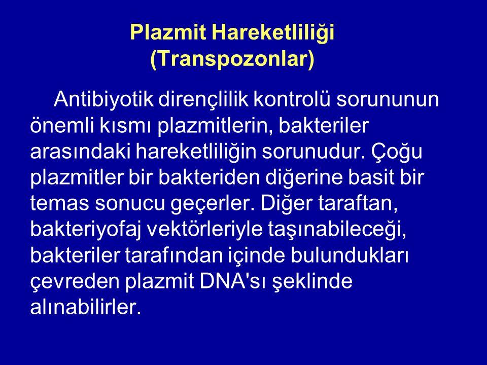 Plazmit Hareketliliği (Transpozonlar)