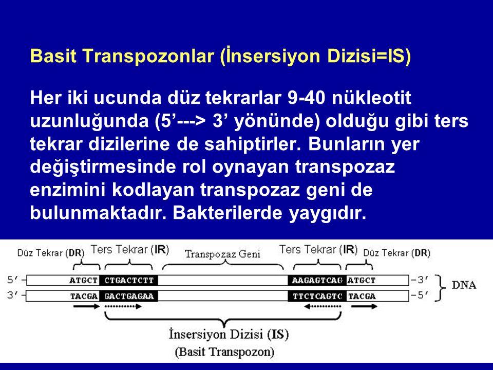 Basit Transpozonlar (İnsersiyon Dizisi=IS)