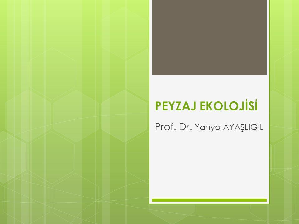 Prof. Dr. Yahya AYAŞLIGİL