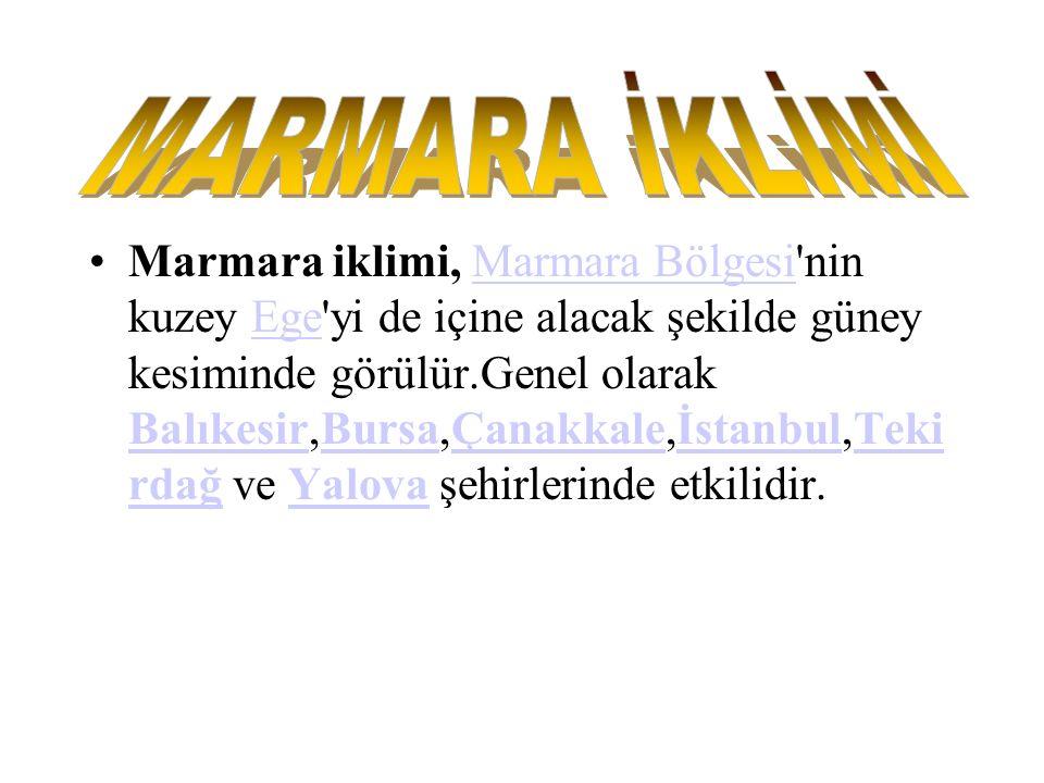 MARMARA İKLİMİ