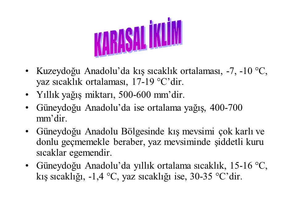 KARASAL İKLİM Kuzeydoğu Anadolu'da kış sıcaklık ortalaması, -7, -10 °C, yaz sıcaklık ortalaması, 17-19 °C'dir.
