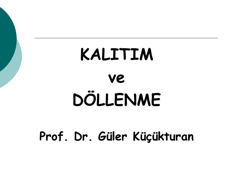 Prof. Dr. Güler Küçükturan
