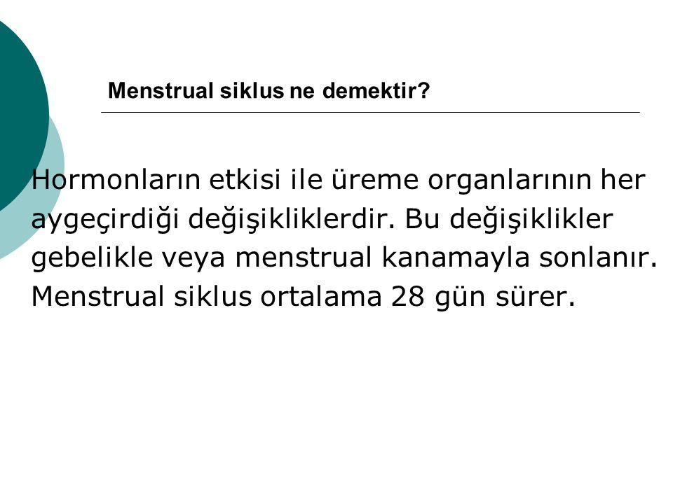 Menstrual siklus ne demektir