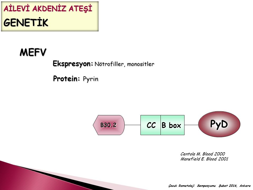 MEFV PyD CC B box AİLEVİ AKDENİZ ATEŞİ GENETİK
