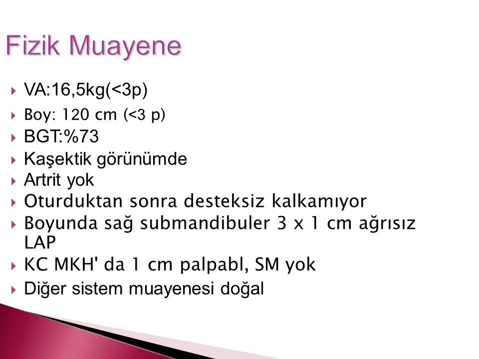 Fizik Muayene VA:16,5kg(<3p) BGT:%73 Kaşektik görünümde Artrit yok