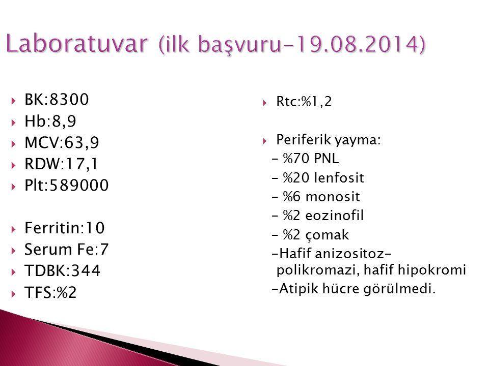 Laboratuvar (ilk başvuru-19.08.2014)