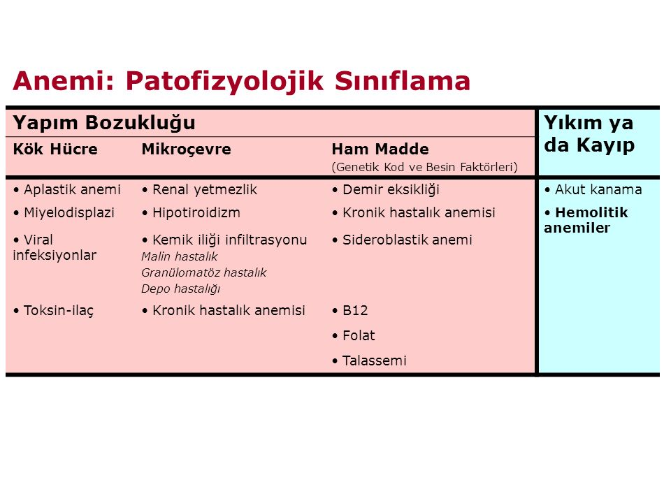 Anemi: Patofizyolojik Sınıflama