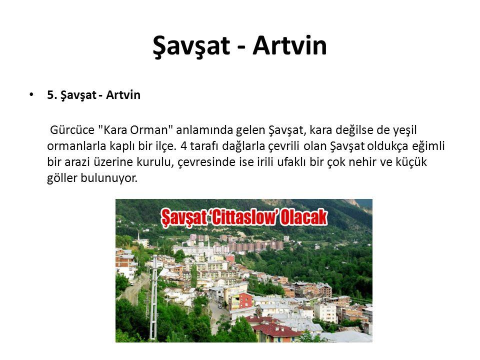 Şavşat - Artvin 5. Şavşat - Artvin