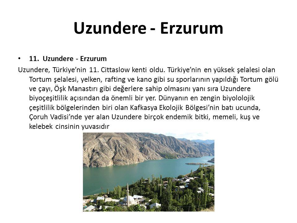 Uzundere - Erzurum 11. Uzundere - Erzurum