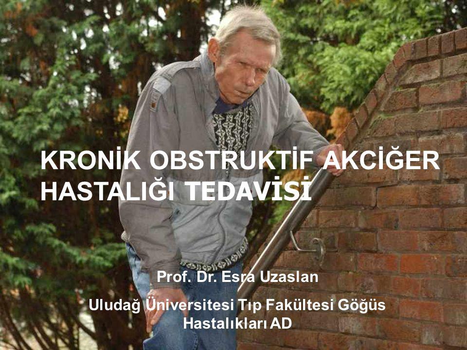 Uludağ Üniversitesi Tıp Fakültesi Göğüs Hastalıkları AD