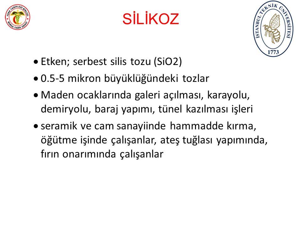SİLİKOZ Etken; serbest silis tozu (SiO2)