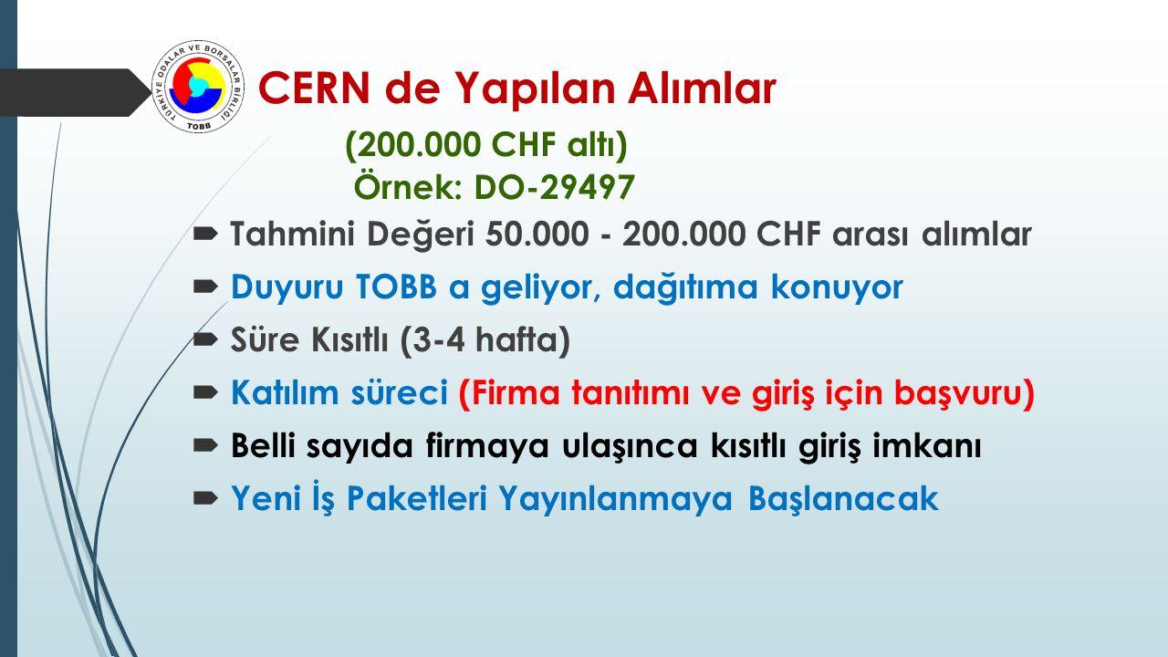 CERN de Yapılan Alımlar (200.000 CHF altı) Örnek: DO-29497
