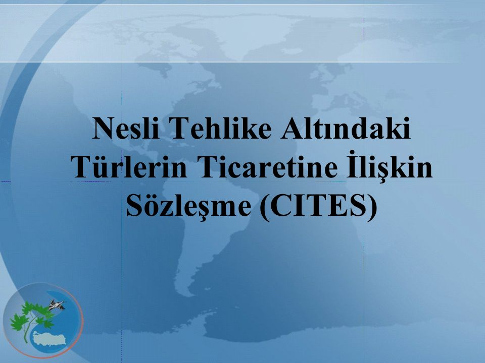 Nesli Tehlike Altındaki Türlerin Ticaretine İlişkin Sözleşme (CITES)