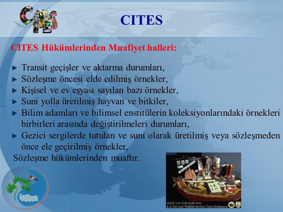 CITES CITES Hükümlerinden Muafiyet halleri: