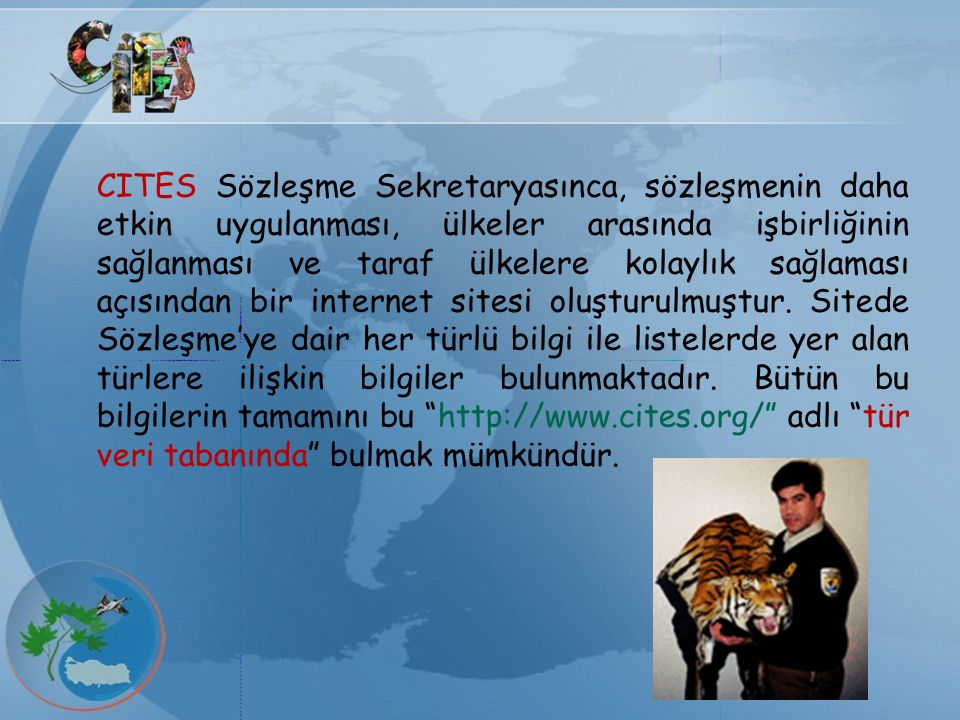 CITES Sözleşme Sekretaryasınca, sözleşmenin daha etkin uygulanması, ülkeler arasında işbirliğinin sağlanması ve taraf ülkelere kolaylık sağlaması açısından bir internet sitesi oluşturulmuştur.