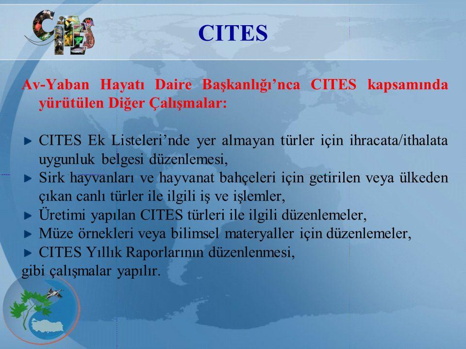 CITES Av-Yaban Hayatı Daire Başkanlığı'nca CITES kapsamında yürütülen Diğer Çalışmalar: