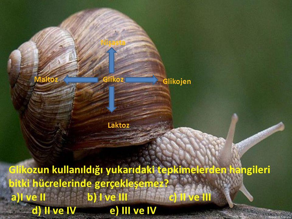 a)I ve II b) I ve III c) II ve III d) II ve IV e) III ve IV