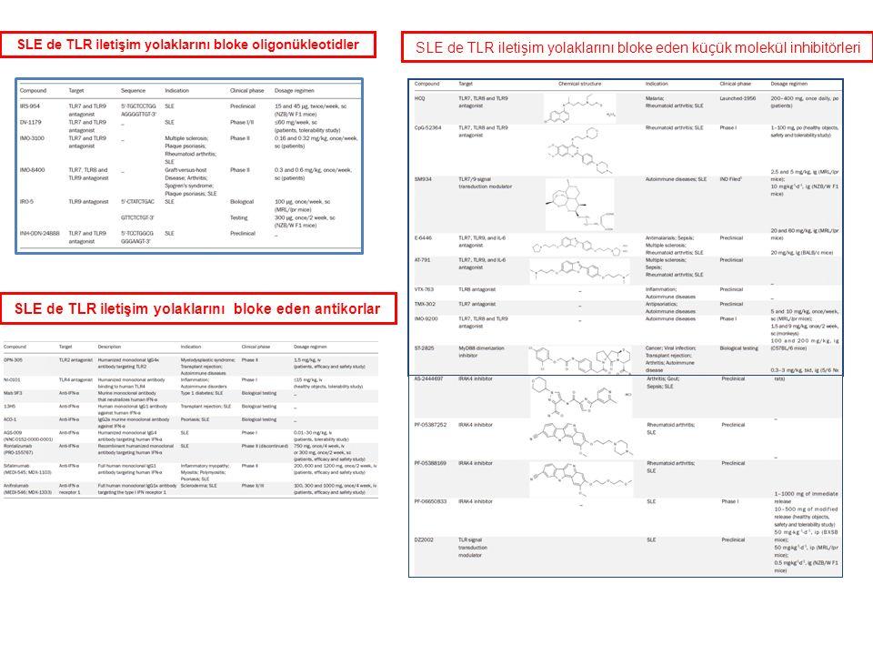 SLE de TLR iletişim yolaklarını bloke eden küçük molekül inhibitörleri