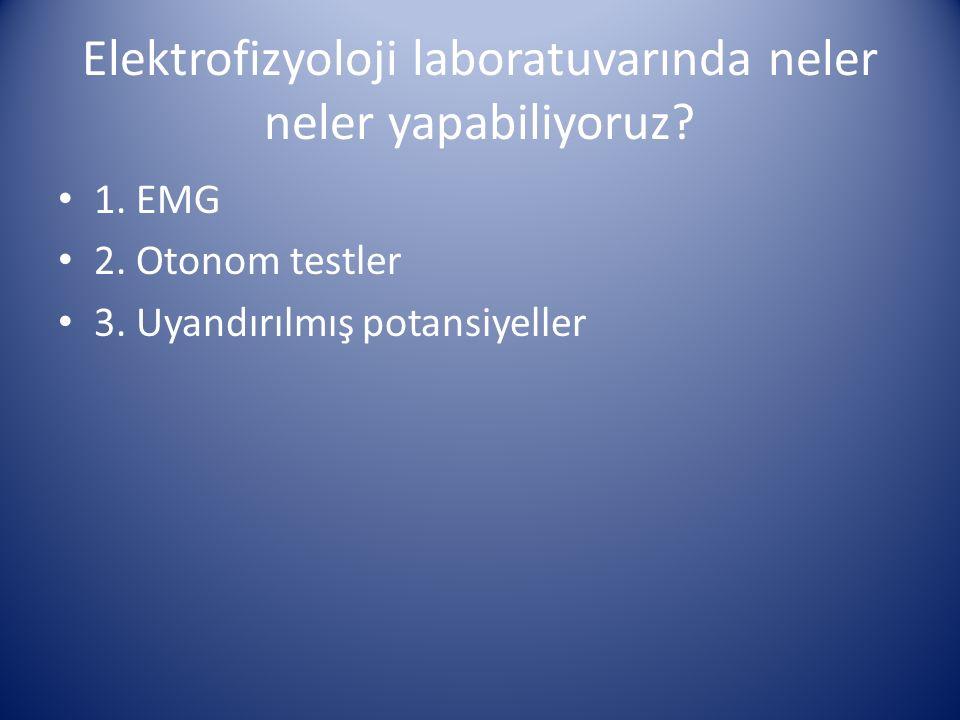 Elektrofizyoloji laboratuvarında neler neler yapabiliyoruz