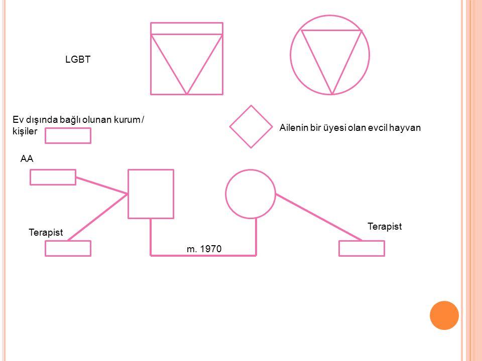 LGBT Ev dışında bağlı olunan kurum / kişiler. Ailenin bir üyesi olan evcil hayvan. AA. Terapist.