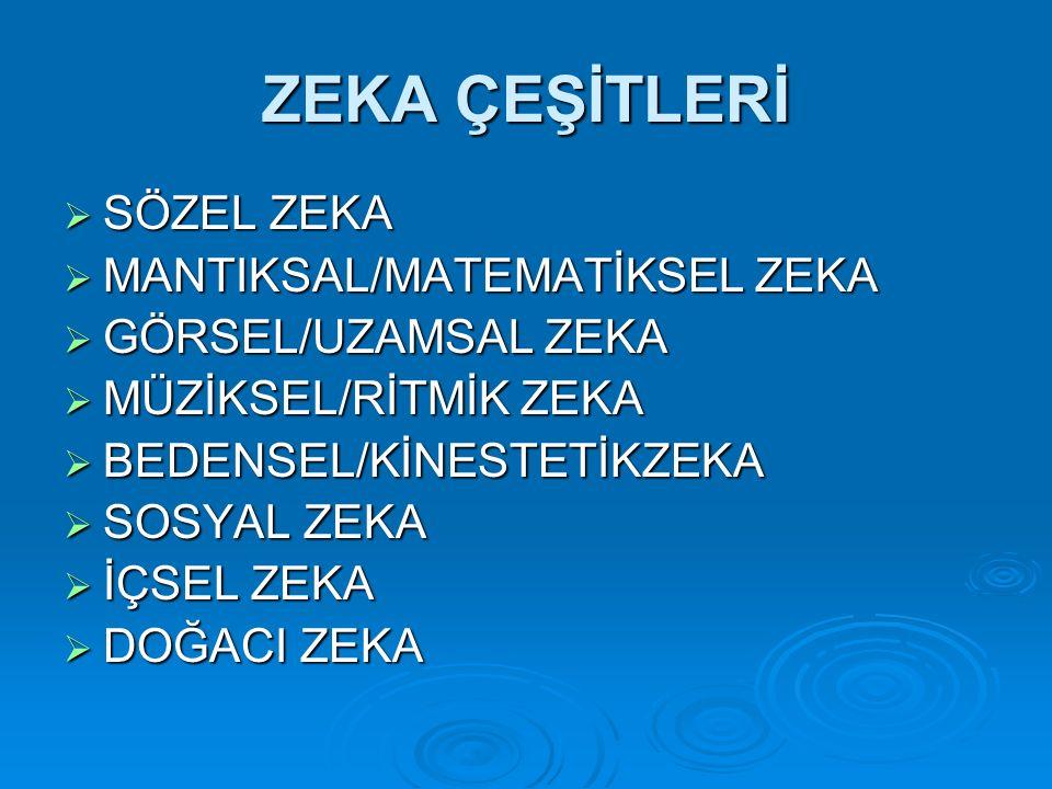 ZEKA ÇEŞİTLERİ SÖZEL ZEKA MANTIKSAL/MATEMATİKSEL ZEKA