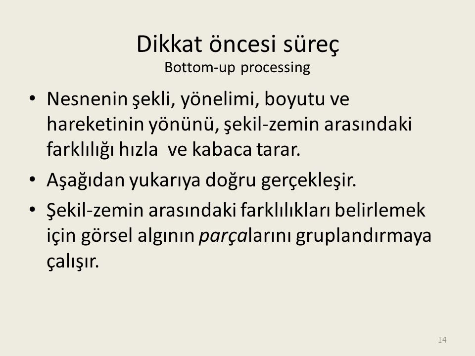 Dikkat öncesi süreç Bottom-up processing